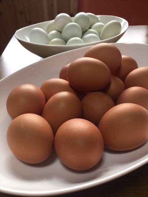 青い卵と赤い卵